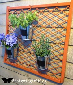 """""""A Shed Wall Garden"""" is what my final name is for this first time {you seen it here}! Fabulous way to upcycle a baby gate, can you belie. Home Crafts, Diy Home Decor, Metal Plant Hangers, Baby Gates, Pet Gate, Lawn And Garden, Indoor Garden, Recycled Crafts, Furniture Projects"""
