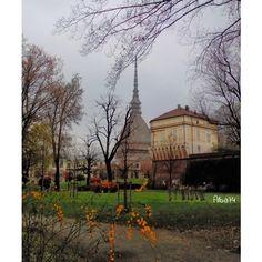 La mole vista dai giardini reali, marzo 2014 #inTO