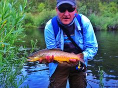 Small stream fly fishing perfection! A Utah high country brown trout.