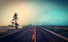 Open Road Yello Striped