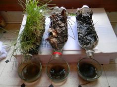 Erosion Demonstration--excellent lesson on land use and environmental impact!