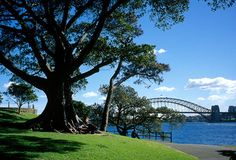 MCKELL PARK  Where: Darling Point Rd, Darling Point