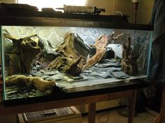 Feeding Your Bearded Dragon In The Right Way Reptile Habitat, Reptile Room, Reptile Cage, Reptile Enclosure, Bearded Dragon Terrarium, Bearded Dragon Cage, Bearded Dragon Habitat, Leopard Gecko Terrarium, Leopard Gecko Habitat