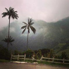 #Salento Hermosos Paisajes #MiColombia