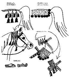 Bedouin Arabian Horse Costumes | Arabian Costumes                                                                                                                                                                                 More