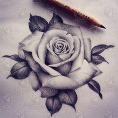 Kết quả hình ảnh cho hinh xam hoa hong