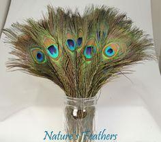Bu tavus kuşu tüyleri masalardaki küçük el yapımı vazoları süsleyecek. :)