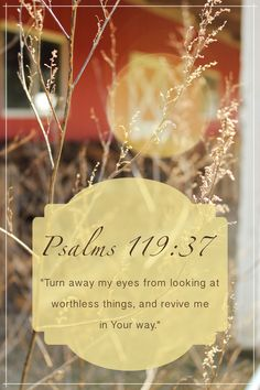 "Psalms 119: 37  ""Turn my eyes away from looking at worthless things,  and revive me in Your way"""