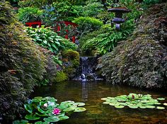 Patio design idea - Home and Garden Design Ideas Japanese Gardens at Butchart Gardens Gardening Books for Kids + lots of great garden & pla. Jardin Luxuriant, Buchart Gardens, Japanese Garden Design, Japanese Gardens, Japanese Style, Sunken Garden, Asian Garden, Gardening Books, Natural Garden