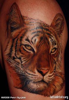 pictures of tiger tattoos   Cover up tiger - Tattoo Artists.org