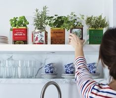 great idea for a kitchen herb garden - upcycled tea tins