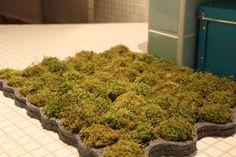 "The moss bath rug ""Larosée"""