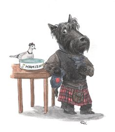 scottish terrier with monocle - Google Search