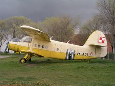 Polish PZL-Mielec : worlds biggest multipurpose single propeller biplane with 9 cylinder 4 stroke 30 L (1830 cui) aircooled radial engine (An-2R)