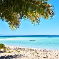 Walakiri beach  #landcsape #beach#sumba#wonderfulindonesia