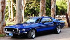1969 Mach 1 Mustang In Electric Blue Ain't she a beaut? True blue right there...