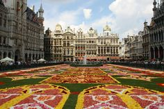 Brussels, Belgium / floral carpet made by workers at the Great Market Square