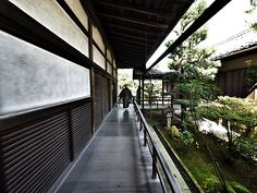 Shunkoin temple, Kyoto