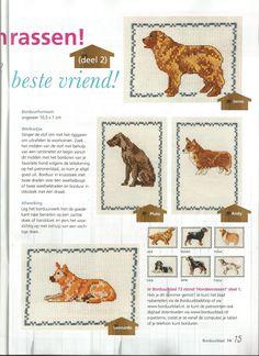Hondenrassen - Permin