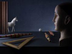 Il Desiderio Di Un Cavallo Bianco