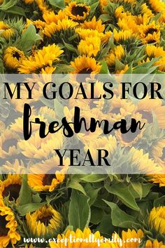Can I skip freshman year of college? Please read below?