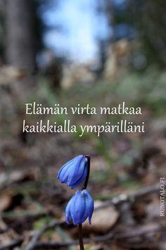 Runotalo voimakortti Elämän virta matkaa...