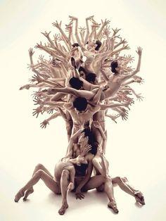 L'albero della vita, la vita in un albero!