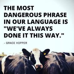 "The most dangerous phrase in our language is ""We've always done it this way."" - Grace Hopper Just because we've always done something, doesn't mean it's right. Great Quotes, Quotes To Live By, Me Quotes, Inspirational Quotes, Change The World Quotes, Mantra, Mercy For Animals, Vegan Facts, Vegan Quotes"