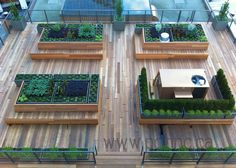 Photos of Vancouver's latest rooftop garden at The Vancouver Club by the convention centre.