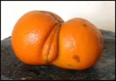 orange vagina