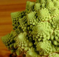 Edible Fractals: Romanesco (a cross between broccoli and cauliflower, which accentuates the great fractal spiral patterns on the top. Tastes a-ok too)