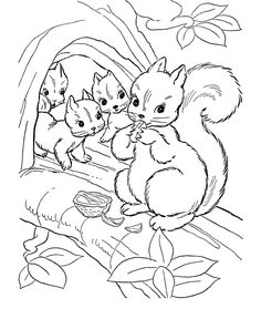 Wild Animal Coloring Pages | Squirrel family Coloring Page and Kids Activity sheet | HonkingDonkey