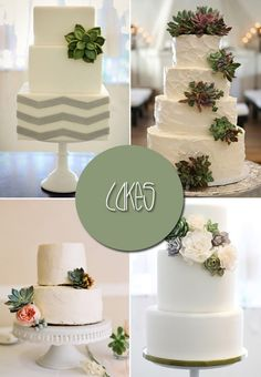 succulent wedding ideas, cakes especially