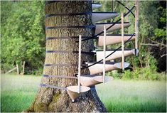 CANOPYSTAIR -- an easy to install spiral staircase for any tree