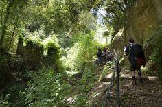 Natura incontaminata sul Promontorio di #Portofino  ... a due passi dal mare!  ------------------------------  Uncontaminated Nature on the Promontory of Portofino ... few steps frome the sea!  #blogtourportofino  - blogtourmonteportofino.wordpress.com - www.liguriaslow.it  #liguria #travel #holiday  @Liguria @100days @Ecoturismonline @Cristiano Guidetti ViaggioVero.com @Slow Travel @Blue Liguria @Liguria Bella @Liguria Bella @Crazy sexy fun traveler @Responsible Travel team @Cinque Terre…