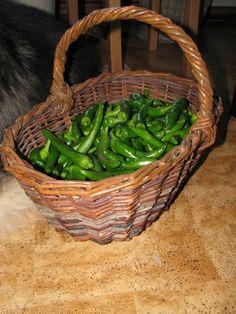 Basket full of chilli