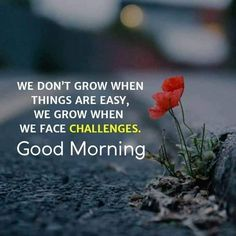 good morning wishes / good morning quotes _ good morning _ good morning quotes inspirational _ good morning quotes for him _ good morning wishes _ good morning greetings _ good morning quotes funny _ good morning beautiful Flirty Good Morning Quotes, Positive Good Morning Quotes, Morning Quotes For Friends, Good Morning Motivation, Good Morning Friends Quotes, Good Morning Image Quotes, Good Morning My Friend, Good Morning Beautiful Quotes, Morning Quotes Images