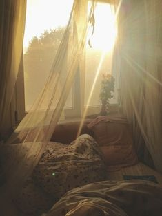 It's that kind of light that makes you want to get up in the morning and start a…