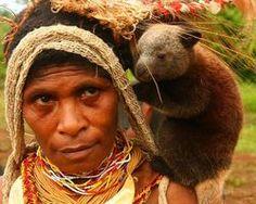 Help Save Endangered Tree Kangaroos! - The Petition Site