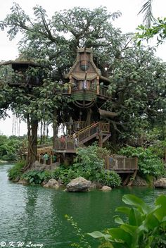 How To Build A Treehouse ? This Tree House Design Ideas For Adult and Kids, Simple and easy. can also be used as a place (to live in), Amazing Tiny treehouse kids, Architecture Modern Luxury treehouse interior cozy Backyard Small treehouse masters Beautiful Tree Houses, Cool Tree Houses, Beautiful Homes, Amazing Tree House, Swiss Family Robinson Treehouse, Robinson Family, Wonderful Places, Beautiful Places, Beautiful Pictures