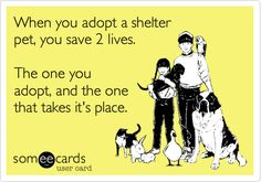 When you adopt a shelter pet, you save 2 lives. The one you adopt, and the one that takes it's place.  WhatEveryDogDeserves.com