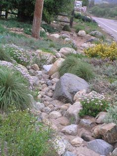 """Dry streams also help minimize and filter storm-water run-off, which is an important issue. Keeping the water on site makes the landscape even more water efficient. Front Yard Landscaping, Backyard Landscaping, Landscaping Ideas, Dry Riverbed Landscaping, Inexpensive Landscaping, Country Landscaping, Dry Creek Bed, Landscape Plans, Landscape Designs"