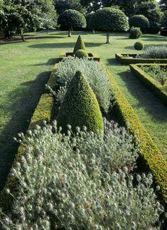 Box hedge parterre at Westbury Court Garden, Wessex.