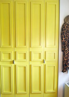 i want yellow closet doors. Add molding and paint to bifold closet doors - from 28 Easy Solutions To Your Closet Problems Decor, Home Diy, Painted Closet, Home Improvement, Remodel, New Homes, Diy Molding, Home Projects, Closet Doors