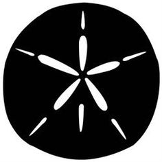 Sand Dollar Die-Cut Decal Car Window Wall by BeeMountainGraphics
