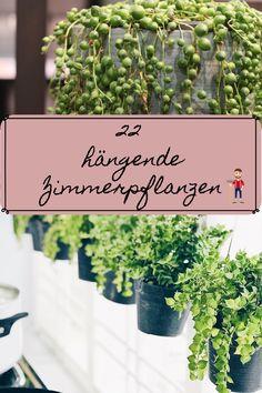 Herb Garden, Home And Garden, Garden Renovation Ideas, Indoor Gardening Supplies, Creta, Flower Oil, Enjoying The Sun, French Artists, Houseplants