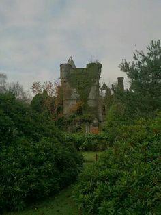 Buchanan Castle Buchanan Castle, Clan Buchanan, Scotland Castles, Scottish Castles, Buchanan Street, Inside Castles, England Ireland, Loch Lomond, Great Paintings