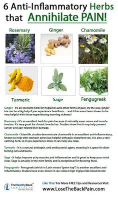 6 Anti-Inflammatory Herbs for Pain Follow us @ http://pinterest.com/stylecraze/health-and-wellness/  for more updates.