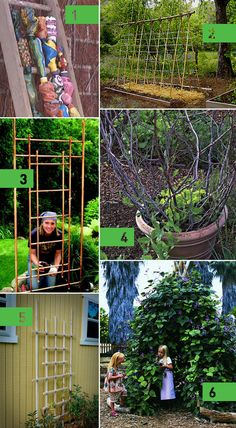 6 #DIY garden trellis ideas! That copper one is beeeautiful!