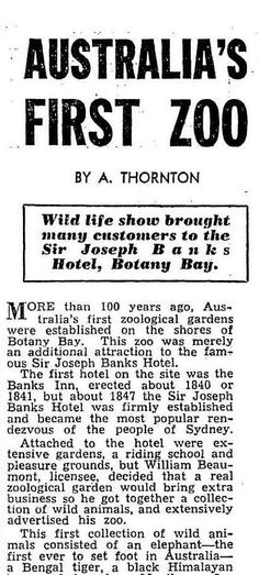 The World's News (Sydney, NSW : 1901 - 1955), Saturday 15 March 1952, page 16